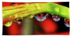 Reflections - Flowers In A Raindrop 001 Panorama Beach Towel
