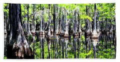 Beach Towel featuring the photograph Reflections Of A Cypress Forest by Tara Potts
