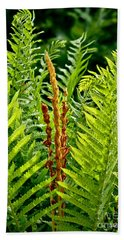 Refreshing Green Fern Wall Art Beach Towel