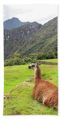 Relaxing Llama In Machu Picchu Beach Towel