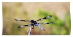 Rest Area, Dragonfly On A Branch Beach Sheet