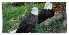 Beach Towel featuring the photograph Resting Bald Eagles by Sheila Brown