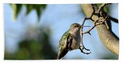 Resting Hummingbird Beach Towel
