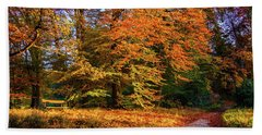 Resting Place In An Autumn Park Beach Towel