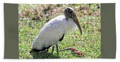Resting Wood Stork Beach Towel by Carol Groenen