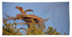 Beach Towel featuring the photograph Returning To The Nest by Rick Berk