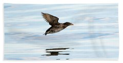 Rhinoceros Auklet Reflection Beach Sheet by Mike Dawson