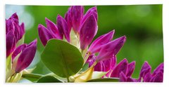 Rhododendron Buds Beach Towel by MTBobbins Photography