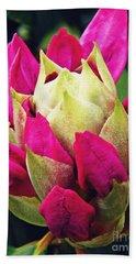 Rhododendron Velvet    Beach Towel by Sarah Loft