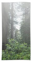 Rhododendrons In The Fog Beach Towel