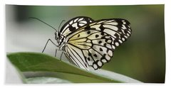 Beach Towel featuring the photograph Rice Paper Butterfly - 2 by Paul Gulliver