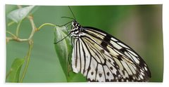 Beach Towel featuring the photograph Rice Paper Butterfly by Paul Gulliver