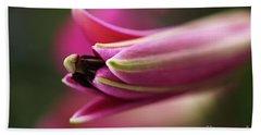 Rich Pink Lily Bud Beach Sheet by Joy Watson