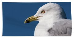 Ring-billed Gull Portrait Beach Towel