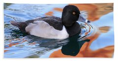 Ring-necked Duck Beach Towel