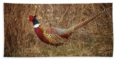 Ring Necked Pheasant Beach Towel