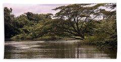 Riparian Rainforest Canopy Beach Towel
