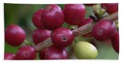 Ripe Kona Coffee Cherries Beach Sheet