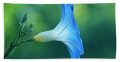 Beach Towel featuring the photograph Rise And Shine by Byron Varvarigos