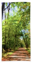 Beach Towel featuring the photograph Riverway Trail - Bisset Park - Radford Virginia by Kerri Farley
