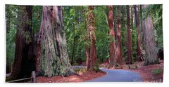 Road Through Redwood Grove Beach Sheet