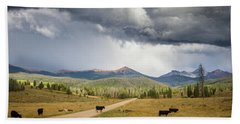 Road To Colorado  Beach Towel by Dawn Romine