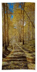 Beach Towel featuring the photograph Road To Gold In Colorado by Steven Reed