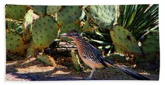 Roadrunner Beach Sheet by Kathryn Meyer