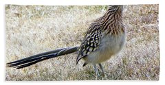 Roadrunner New Mexico Beach Towel by Joseph Frank Baraba