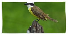 Roadside Kiskadee Beach Sheet by Tony Beck
