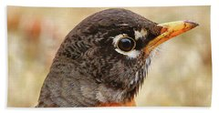 Beach Towel featuring the photograph Robin by Debbie Stahre