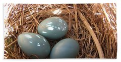 Beach Towel featuring the photograph Robin Eggs by Angie Rea