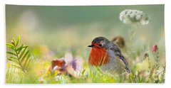 Robin Red Breast Beach Towel