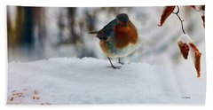 Robin Redbreast Beach Sheet