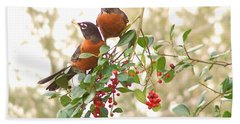 Robins In Holly Beach Towel