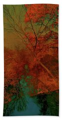 Beach Towel featuring the photograph Rock Creek At M by EDi by Darlene