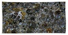 Rock Lichen Surface Beach Sheet