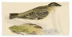 Rock Sparrow Beach Towel by English School