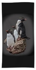 Rockhopper Penguins Beach Sheet