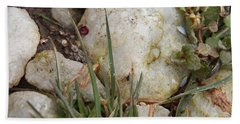 Rocks And Grass Beach Towel