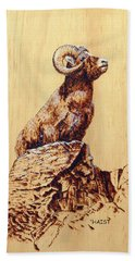 Beach Sheet featuring the pyrography Rocky Mountain Bighorn Sheep by Ron Haist