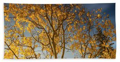 Rocky Mountain Fall Colors Beach Sheet