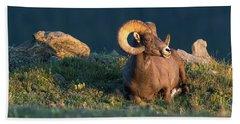 Rocky Mountain High Beach Towel