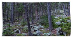 Beach Towel featuring the photograph Rocky Nature Landscape by James BO Insogna