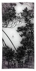Beach Towel featuring the photograph Romantic Spider by Megan Dirsa-DuBois