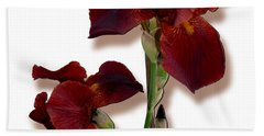 Root Beer Irises Beach Towel by Tara Hutton