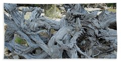 Roots In Nature Beach Towel