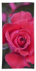 Rose 160 Beach Towel