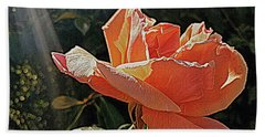 Rose And Rays Beach Towel by Suzy Piatt