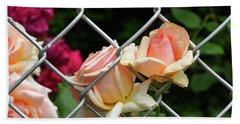 Rose Fence Beach Towel